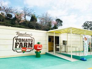 浜名湖パルパル「トマトーナのもりもりトマトーレ」